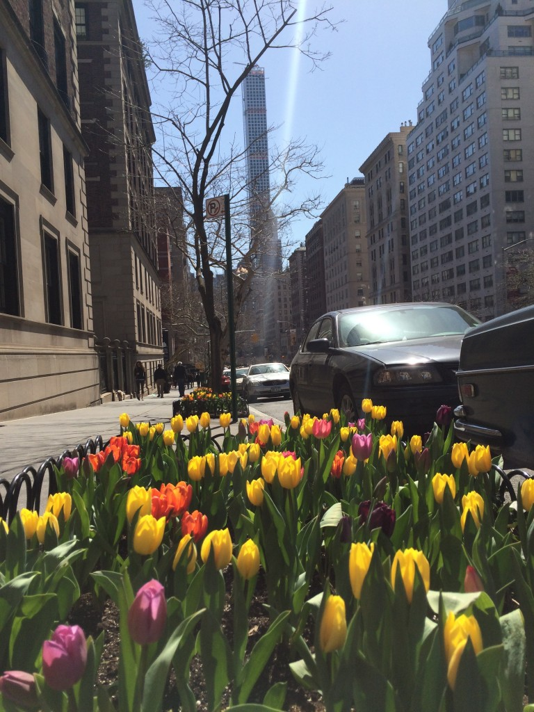 New York City, spring 2015